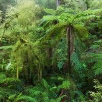 New Zealand; Landscape photography