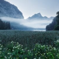 Leopoldsteiner Lake, Styria