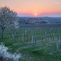 Landscape Photographer Austria